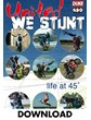 United we Stunt Download