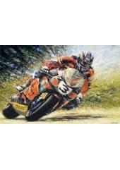 John McGuinness TT Legend  Signed Print
