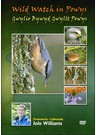 Wild Watch in Powys DVD