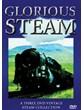Glorious Steam