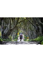 Michael Dunlop Dark Hedges Acrylic