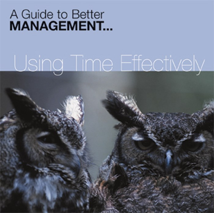 Using Time Effectively CD