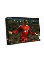 Fernando Torres A1 Canvas Print