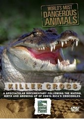 World's Most Dangerous Animals - Killer Crocs DVD