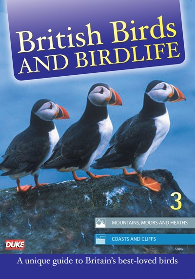 British Birds & Birdlife Vol 3 DVD
