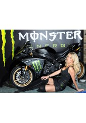 Promo Girl 2011 TT Press Launch