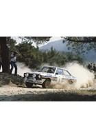 Ari Vatanen 1981 Acropolis Rally