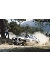 Ari Vatanen 1981 Acropolis Rally Acrylic