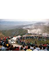 Lancia Delta San Remo Rally