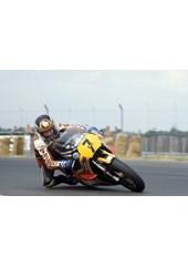 Barry Sheene 1979 British GP Acrylic