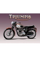 Triumph Metal Sign