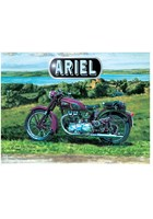 Ariel Metal Sign