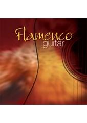 Flamenco Guitar CD