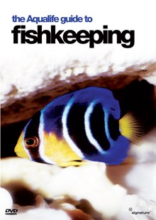 The Aqualife Guide to Fishkeeping (DVD)
