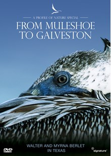 Profiles of Nature - From Muleshoe to Galveston DVD
